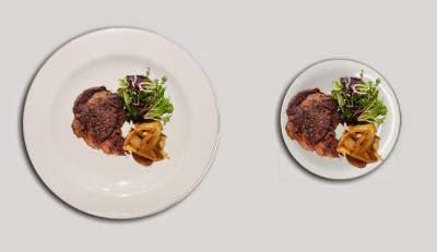Obr. 2: Ilúzia veľkosti porcie jedla **